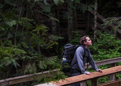 Kirkkonummi-metsä2.jpg