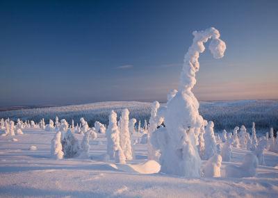 Riisitunturi-National-Park-Photographer-Markku-Pirttimaa (3).jpg
