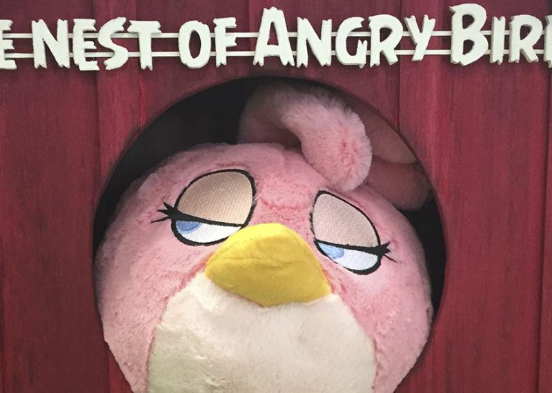 Angry Birds_1920x625.jpg