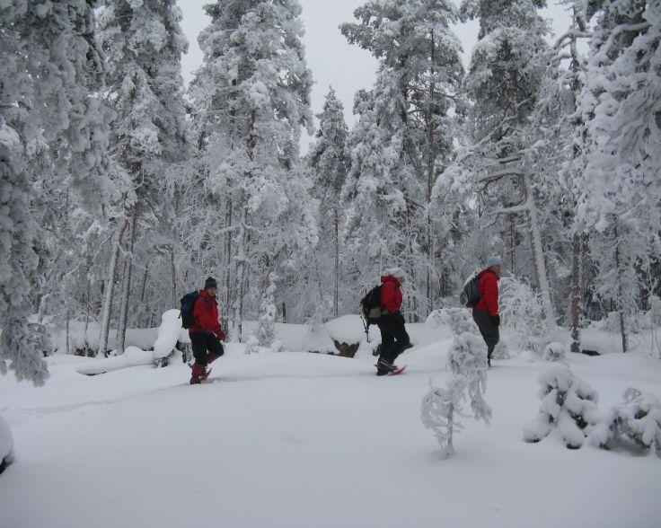fiilistely - Hike lumikenkäilyä.JPG
